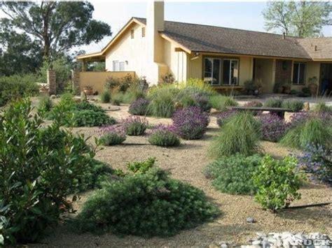 desertscape gardening pinterest landscaping ideas and landscapes