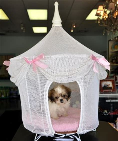 The Princess And The Pup Pet Boutique Luxury Accessories For Your Royal Pooch by Elagant Beds Unique Beds Luxury Beds