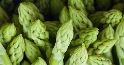 vegetables on atkins atkins 65 low carb fruits and veggies low carbe diem