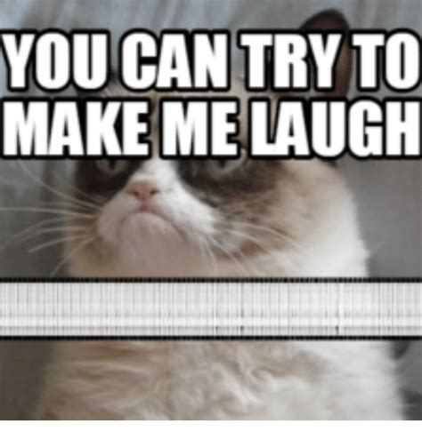 Make Me Laugh Meme - pictures to make laugh 32 gifs guaranteed to make you