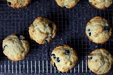 Ricotta Muffins Smitten Kitchen by Blueberry Muffins Smitten Kitchen