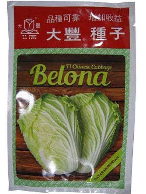 Benih Jagung Manis Asian Honey benih pertanian sawi putih belona f1 cabbage 10