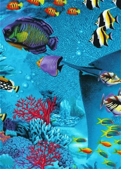 tropical fish comforter tropical fish bedding collection tropical by