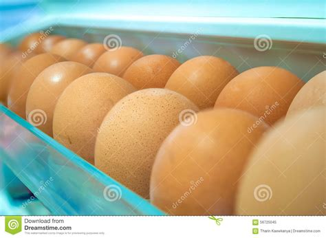 Shelf Of An Egg by Eggs On A White Shelf Stock Photo Image 56725045