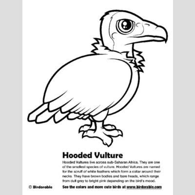 king vulture coloring page vultures of the world cute birds by birdorable