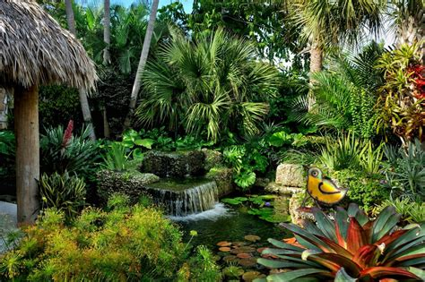 tropical landscaping design ideas hgtv