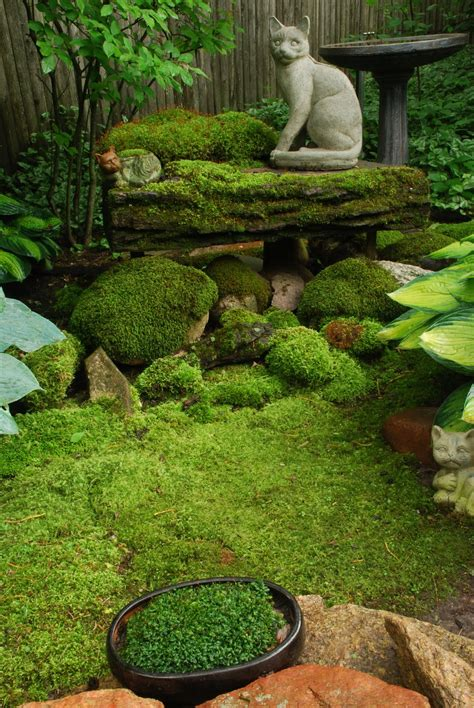 Moss Gardens by Rotary Botanical Gardens Hort A Visit From Mr Moss