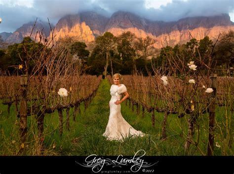 winter wedding venues south gorgeous bridal portrait with winter vineyard backdrop stellenbosch south africa moelenvliet