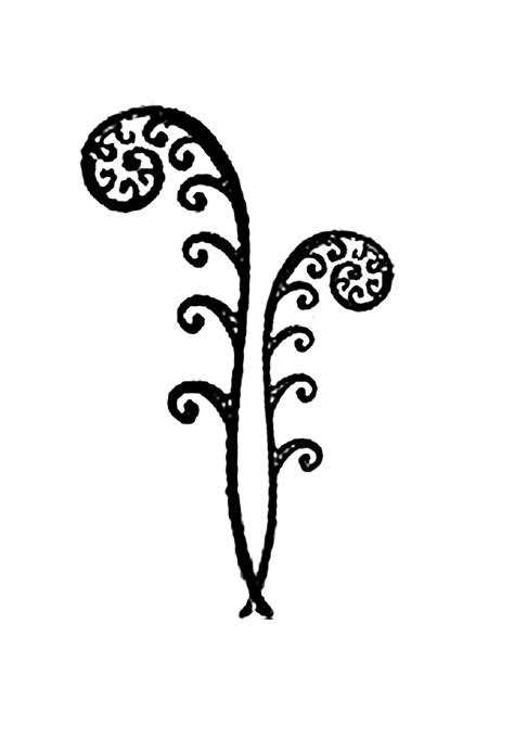 fern tattoo designs simple fern frond design tats