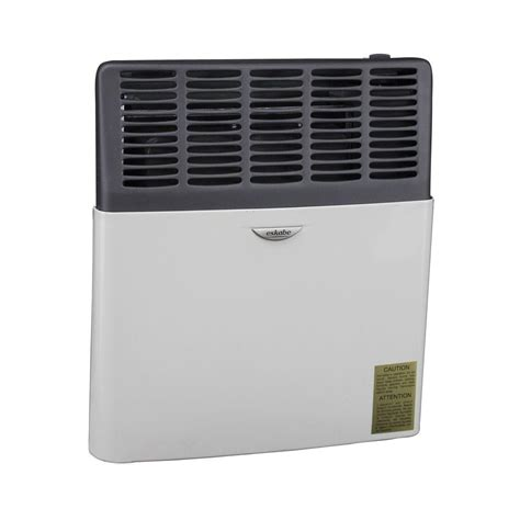 Home Depot Heat L by Hearth Products 8 000 Btu Gas Direct Vent