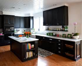 Dark Kitchen Cabinets by Kitchen Cabinet Organizing Ideas Pinterest 2017 Kitchen