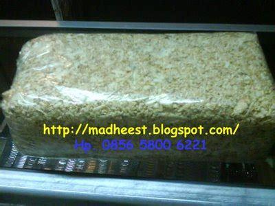 Pengganti Serbuk Kayu Untuk Kandang Hamster alas kandang hamster sebaiknya pakai pasir atau serbuk