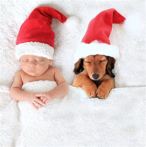 baby and puppy adorable baby and puppy picture ideas popsugar