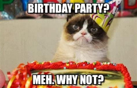 Birthday Party Memes - birthday party grumpy cat birthday meme on memegen