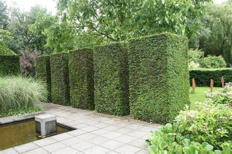 Garten Gestalten Mit Eiben by Formschnitt Eiben Wasser Im Garten Gr 196 Ser Das Mach