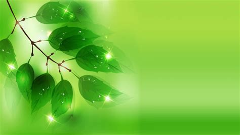 Wallpaper Green Leaves On White Background | green leaves wallpapers wallpaper cave