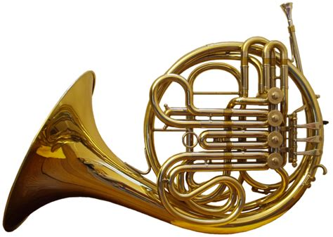 french horn section εικόνα french horn front png βικιπαίδεια eikona french