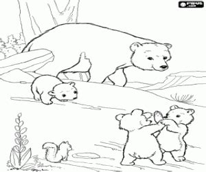 mama bear coloring pages the little bears and mama bear coloring page printable game