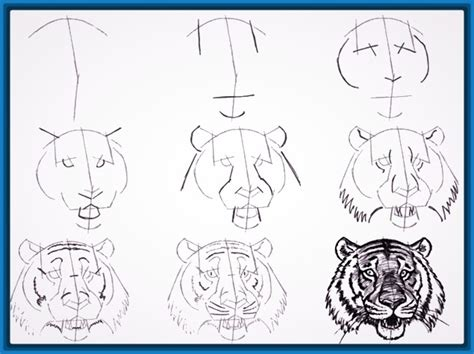 imagenes para dibujar a lapiz chidas faciles paso a paso impresionantes dibujos para aprender a dibujar paso por paso