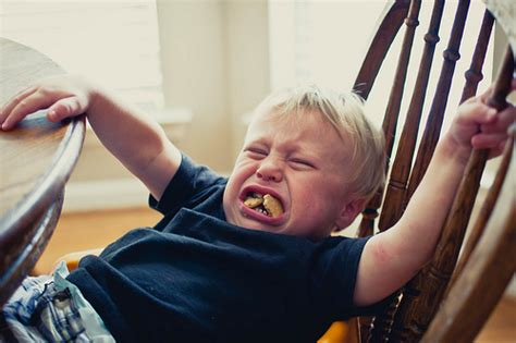 Did Throw A Tantrum In A To Store by 50 Hilarious Reasons Why Toddlers Chuck Tantrums