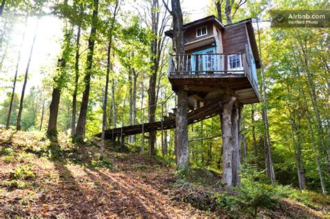 tiny tree house tiny fern forest treehouse provides a cozy vacation hideaway in the woods of vermont tiny fem
