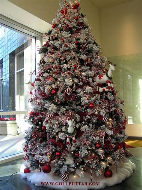 christmas tree quotes and photo ideas
