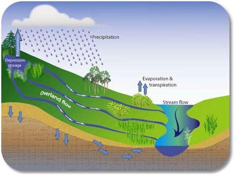 runoff diagram water cycle runoff related keywords water cycle runoff