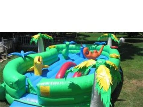 baby bounce house bounce house baby dino tj s taylor rental
