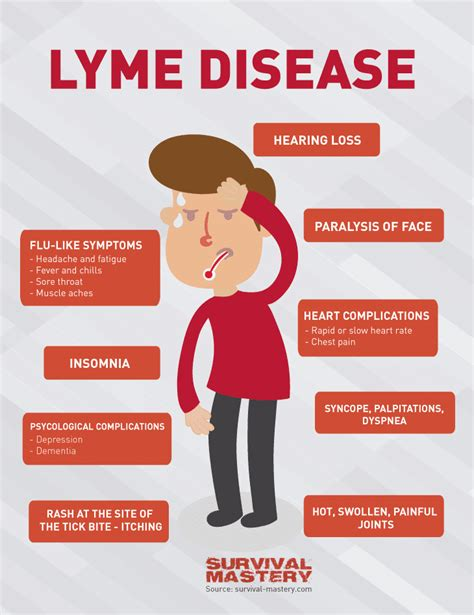 lyme disease symptoms lyme disease symptoms tests treatment and prevention