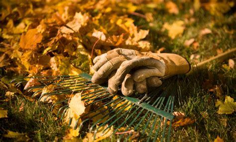 giardino autunno giardino in autunno i lavori da fare per prepararlo all