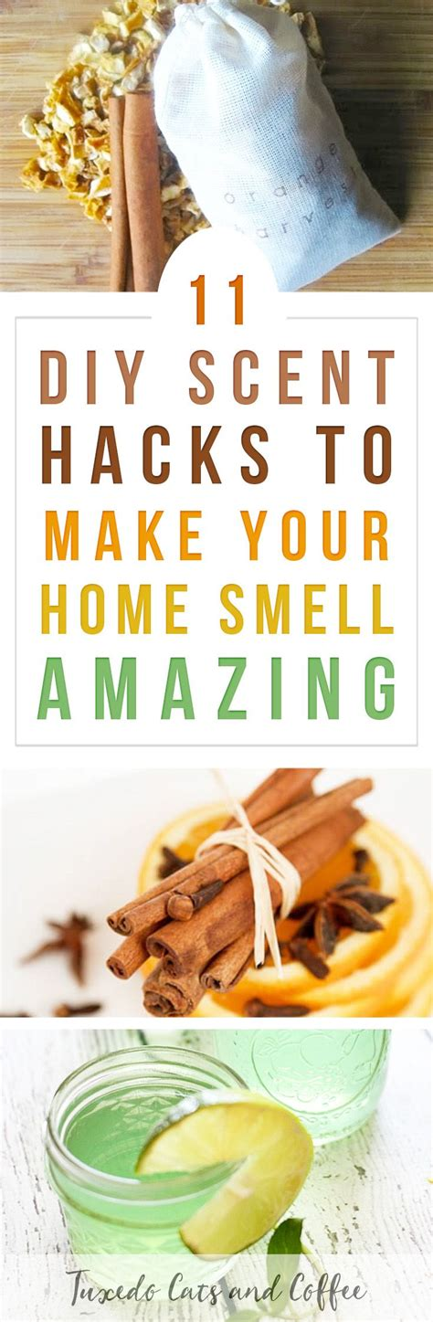 Usher Wants To Make You Smell by Best 25 Air Freshener Ideas On Diy