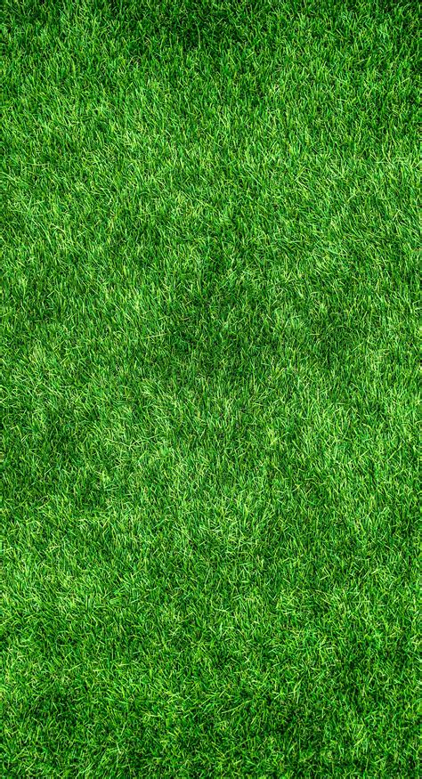 wallpaper abstract grass free stock photo of abstract artificial turf background