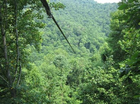 Black Mountain Cabins Evarts Ky by Black Mountain Thunder Zipline Kentucky All You Need
