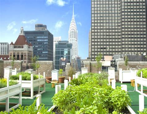 8 gorgeous rooftop gardens across nyc inhabitat green design innovation
