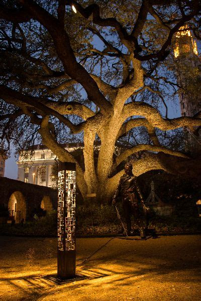 tree lighting san antonio 14 best historic san antonio images on