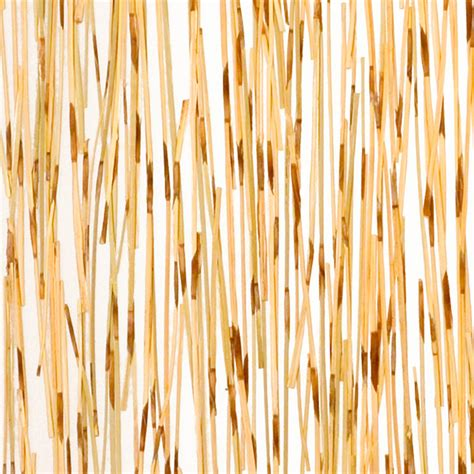 Thatch Panels Varia Ecoresin Naturals Tiger Thatch Materials 3form