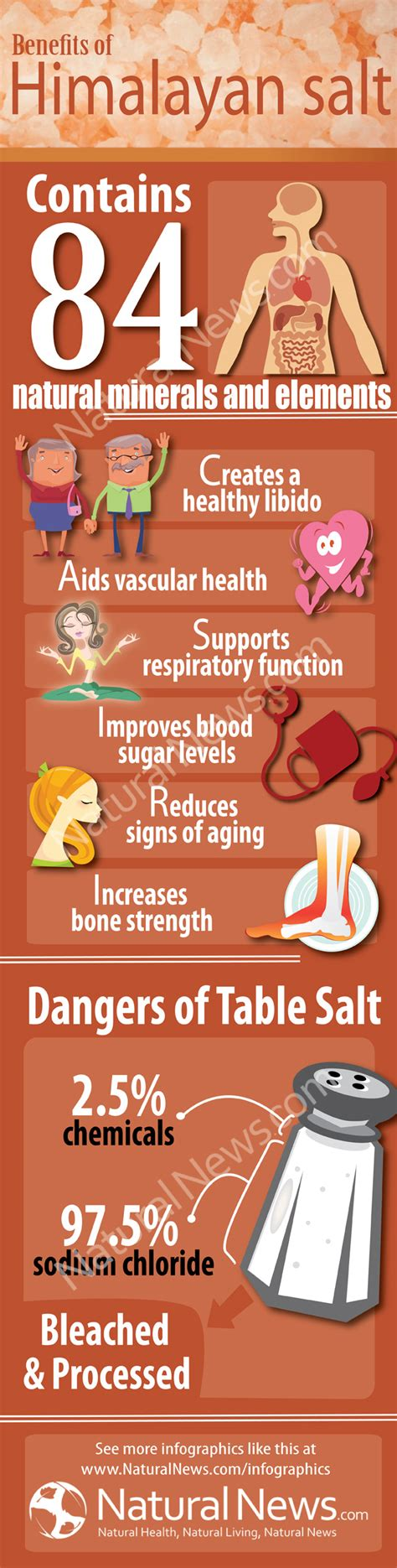 Health Benefits Of Himalayan Salt Ls by Your New Best Friend In The Kitchen Himalayan Rock Salt