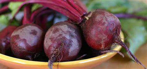 Congested Liver Detox by Beet Borscht A Way To Cleanse A Congested Liver