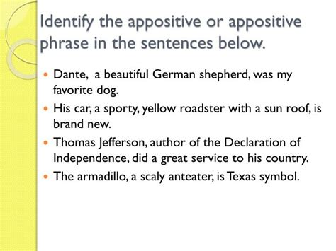 Cupola In A Sentence Ppt Grammar Unit The Appositive And Appositive Phrase