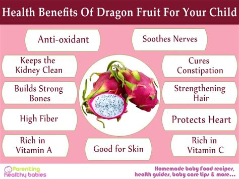 7 Uses For Fruit by Is Fruit For You During Pregnancy All The