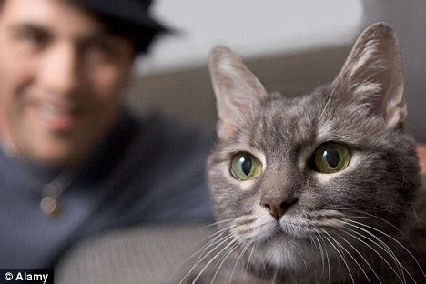 whos smarter cats or dogs who s smarter or cat owners veterinary secrets with dr andrew jones dvm