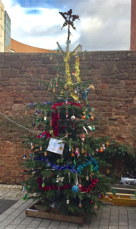 wesc foundation tree announced as winner of princesshay s