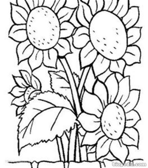 imagenes de animales y plantas para colorear flores para colorear biopedia