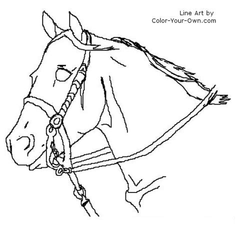 coloring pages of quarter horses tweet coloring pages blog newest additions main coloring