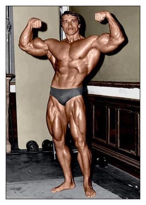 a look at just how well arnold schwarzenegger has aged 1000 images about bodybuilding on fitness
