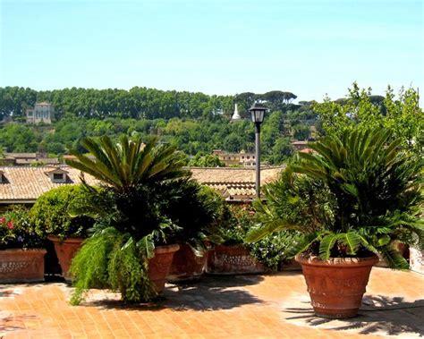 progettazione giardini roma pi 249 di 25 fantastiche idee su progettazione di giardini su