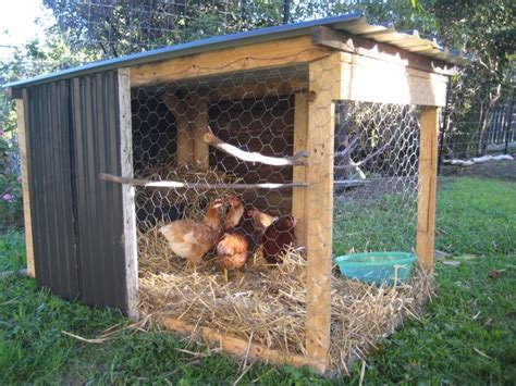 chicken coop bedding simple poultry house with food inside chicken coop 12079