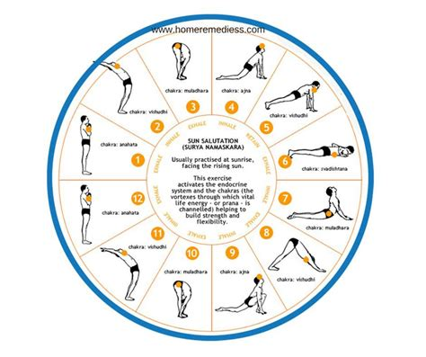 surya namaskaras surya namaskar steps for weight loss traditional medicine