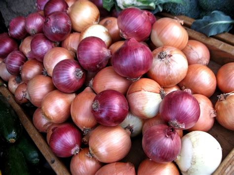 on ion grow onions if you want a versatile veggie veggie gardener