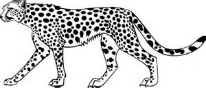Running Cheetah Outline by Cheetah Coloring Pages Animal Coloring Pages Colorin Pages Coloring Cheetah